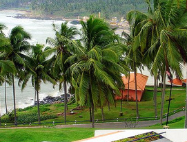 Kovalam South Tour Packages